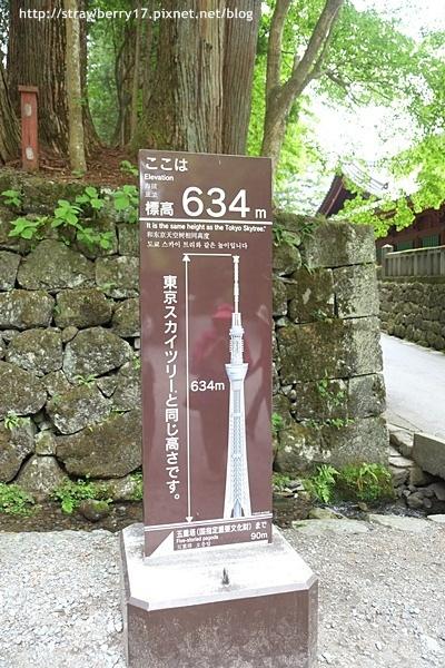 DSCF4319