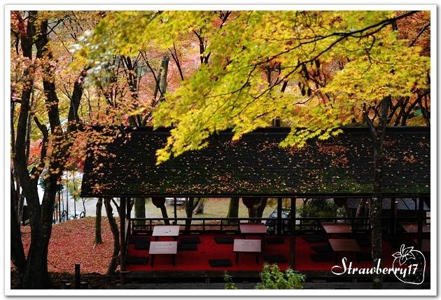 20071122神護寺